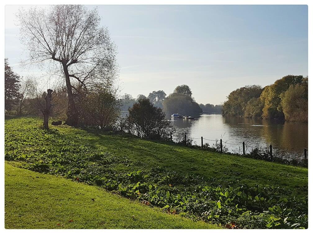 Buccleuch Gardens, Richmond
